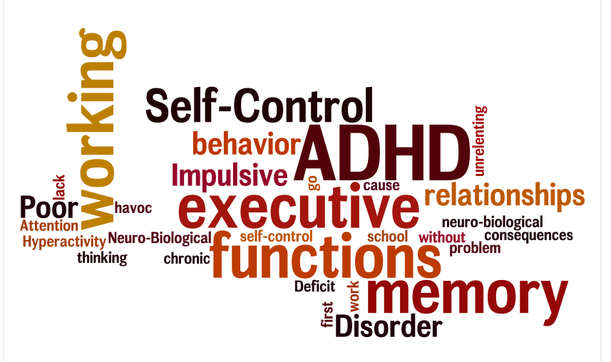 adhd things to know about adhd working memory